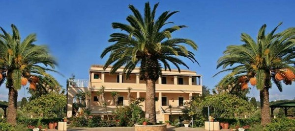 Palms of Corfu